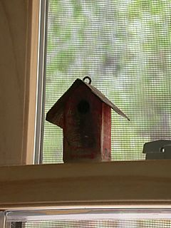 Kitchen window birdhouse ornament