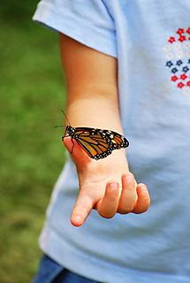 Owen holding a butterfly