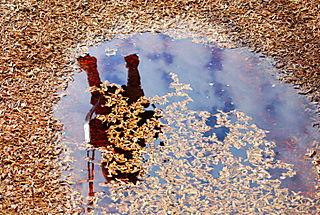 Swing Puddle Reflection