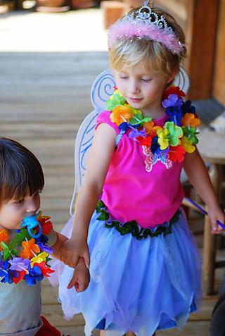 Fairy princess sisters