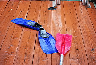 Fins and paddle