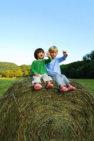 Two girls on a bale of hay