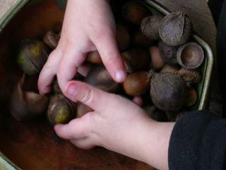 Fingers, treasures