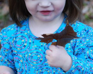 Looking at a leaf