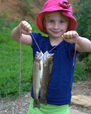 Owen's catch
