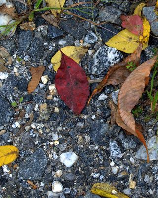 Gravel and a touch of red