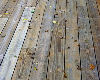 Leaves on the deck: the beginning
