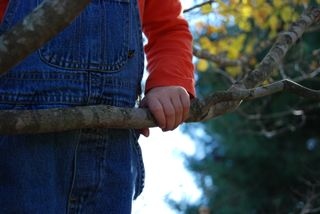 She climbs trees