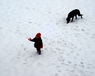 A girl, a snowball, and a dog