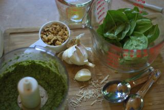 Making Pesto