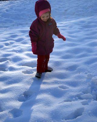 Boo Bear in the snow