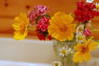 Bouquet in the bathroom