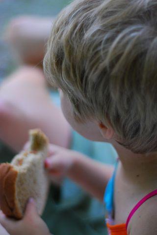 Peanut butter picnic sandwich