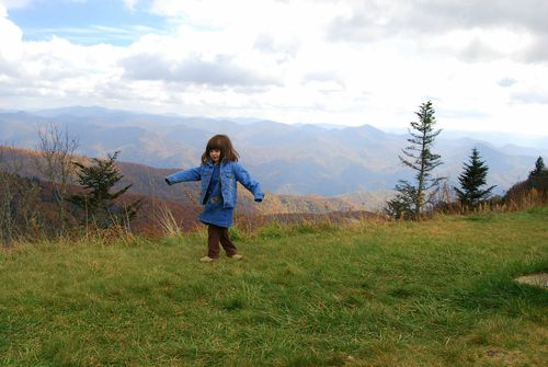 Barrett at Waterrock Knob Overlook