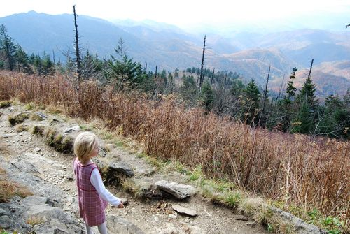 Owen on Waterrock Knob Trail