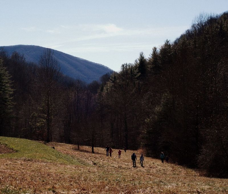 Family and friends walking through a field with mountains