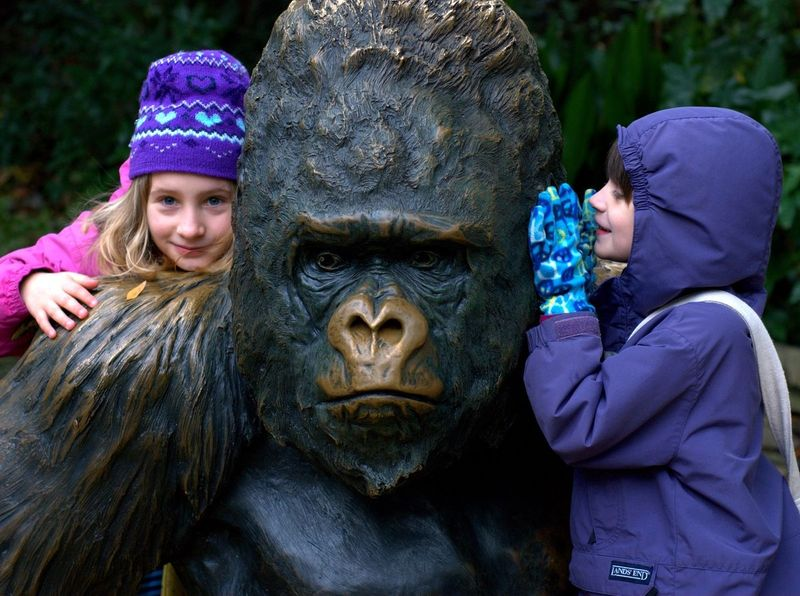 Owen and Barrett and the gorilla bronze